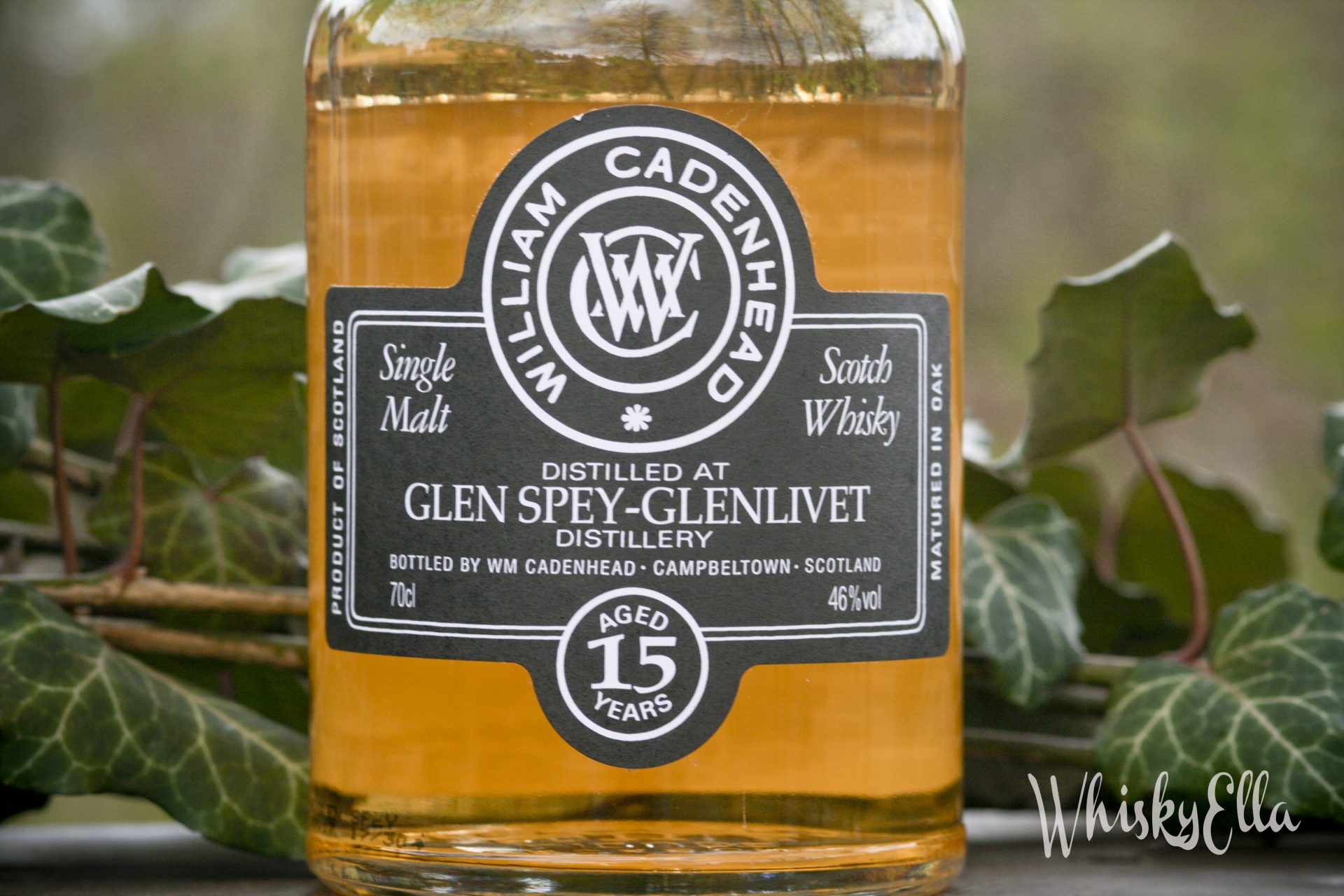 Nasza recenzja Glen Spey 15 yo Cadenhead's 2017 #66