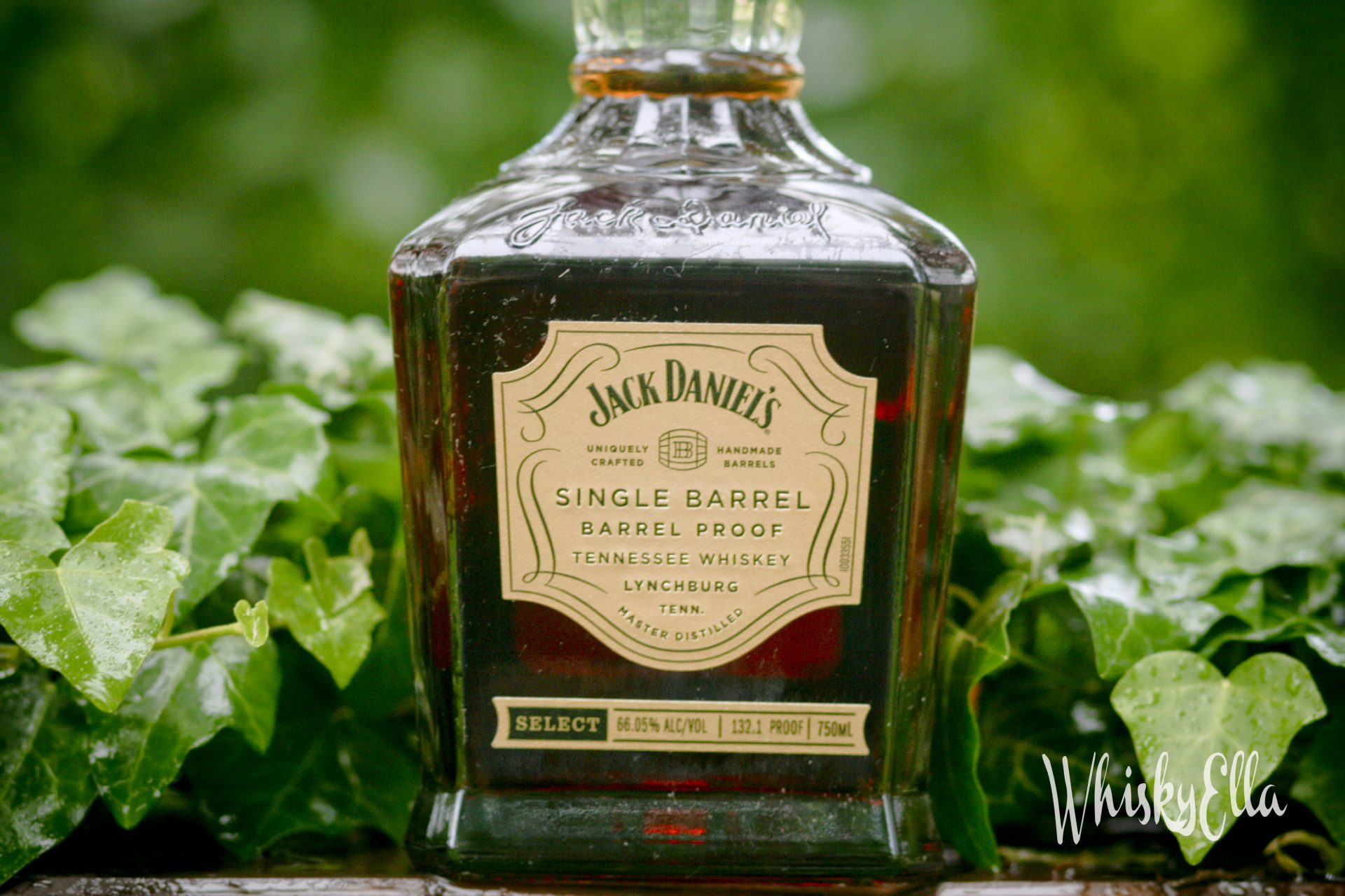 Nasza recenzja Jack Daniel's Single Barrel Barrel Proof Select 132,1 proof (66,05%), barrel no: 19-00223 #76